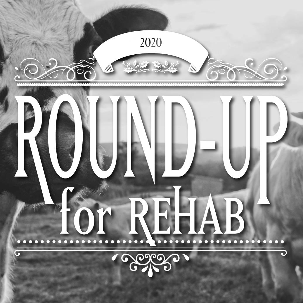 Round-up for Rehab Stephenville