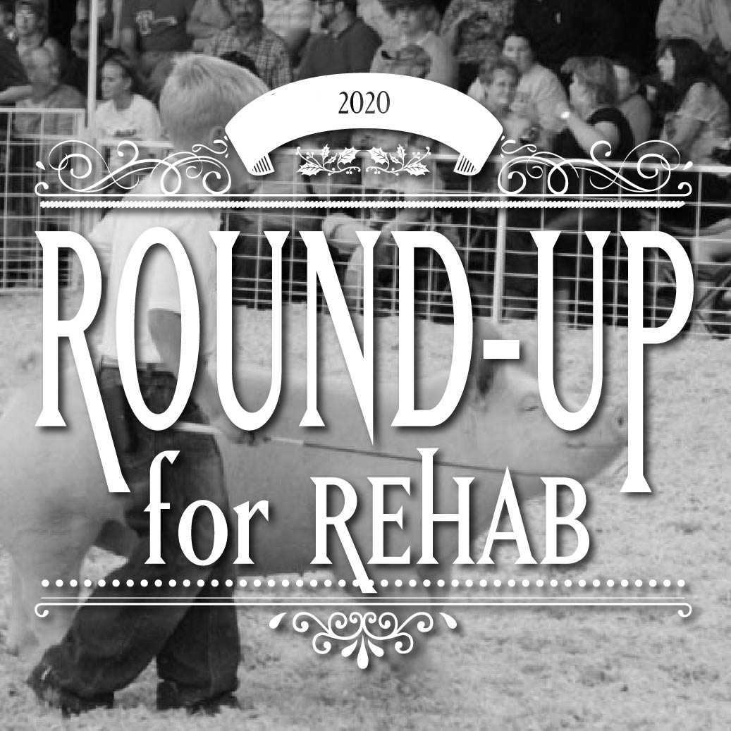 Round-up for Rehab Pig Sale 2020