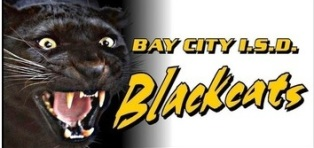 Bay City vs El Campo Ronda 2
